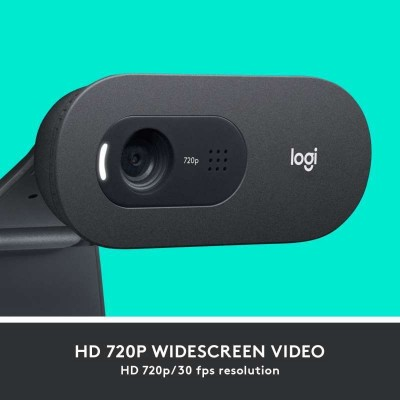 Logitech C505 HD Webcam - USB